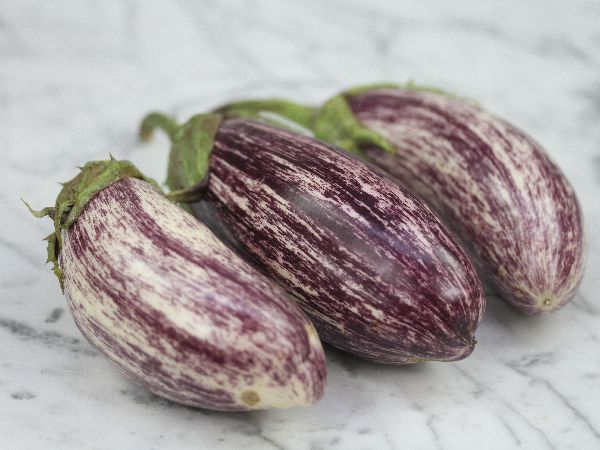 Edirne Purple Striped Eggplant | Baker Creek Heirloom Seed Co