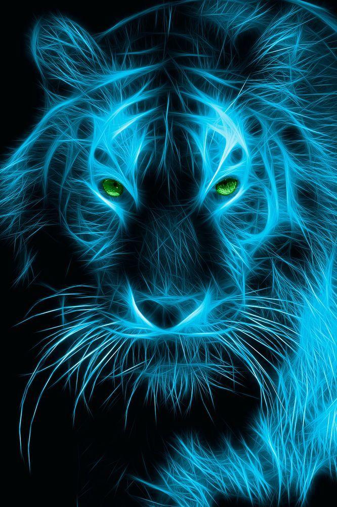 Mystical Tiger Wallpaper