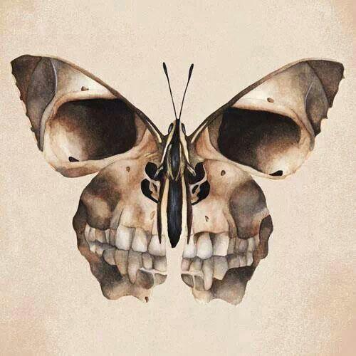 Skull & Butterfly.