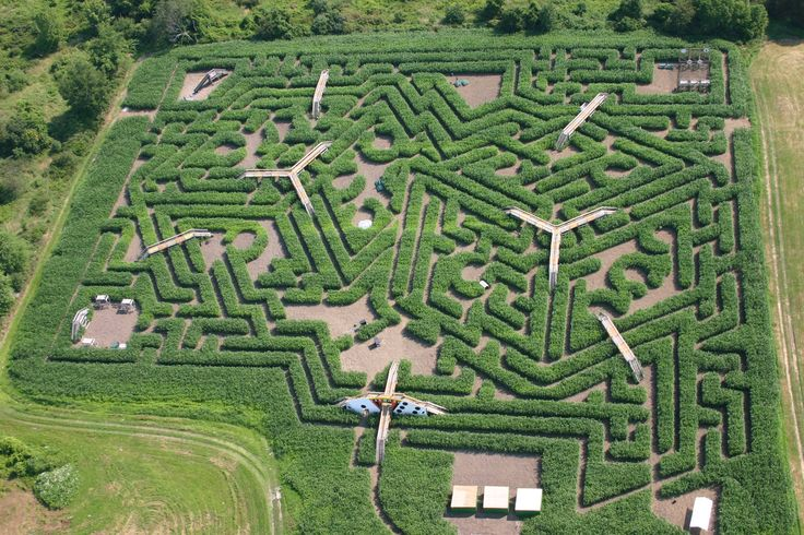 17 best images about reference mazes on pinterest for Garden maze designs