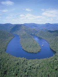 I spent yesterday in Wild Rivers National Park, on the Gordon River. We specifically chose World Heritage Cruises, because this family run, local company helped with the conservation battle to save the Franklin River from destruction. We always prefer to support those who help protect the natural values that Tasmania has to offer.
