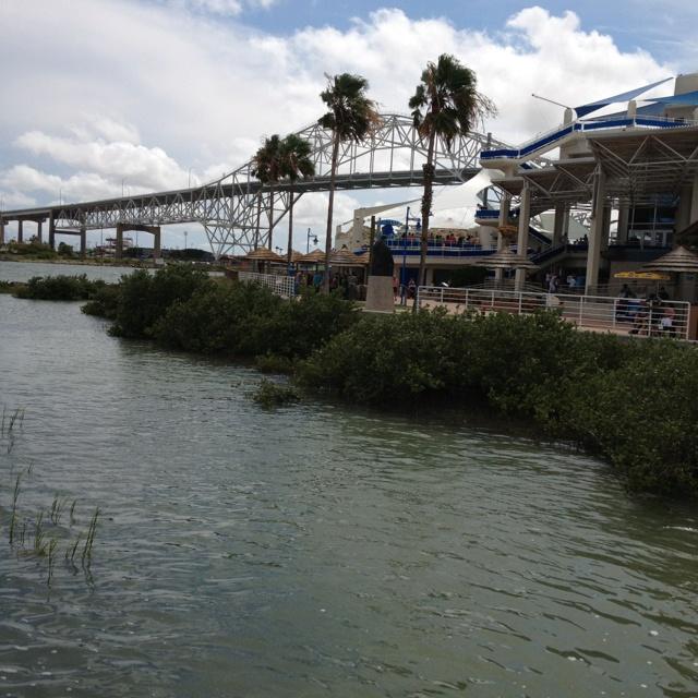 Beach House Rentals In Corpus Christi: 77 Best CORPUS CHRISTI.TEXAS Images On Pinterest