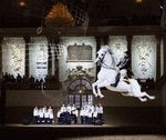 Visiting #Vienna? Must see the famous snow white Lipizzaner stallions.