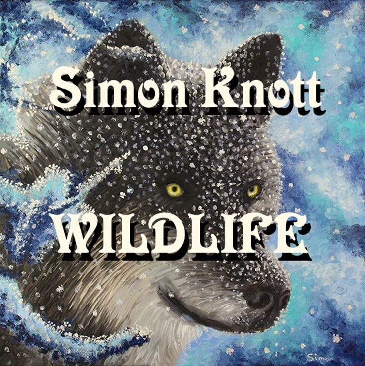 Simon Knott #wildlife wildlife animal art and Gigi