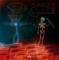 Spine (Jardín de Huesos); esta listo desde el 2012 representa las profundas ganas de conocer nuestro interior, partiendo por nuestro esqueleto.