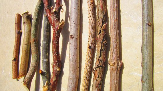 Sacred Ritual Wood Wand Wood Wiccan Supply by botanicallampshades