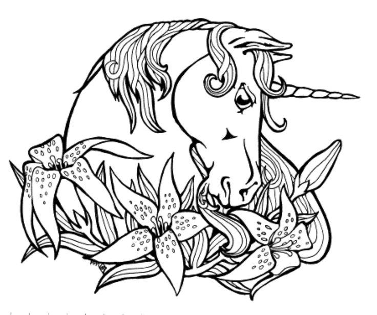 11 best Unicorns images on Pinterest | Einhörner, Malvorlagen und ...
