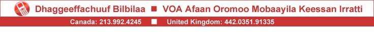 Voice of America Afaan Oromo service   http://www.voaafaanoromoo.com/archive/addunyaa/latest/3220/3227.html   http://www.voaafaanoromoo.com/