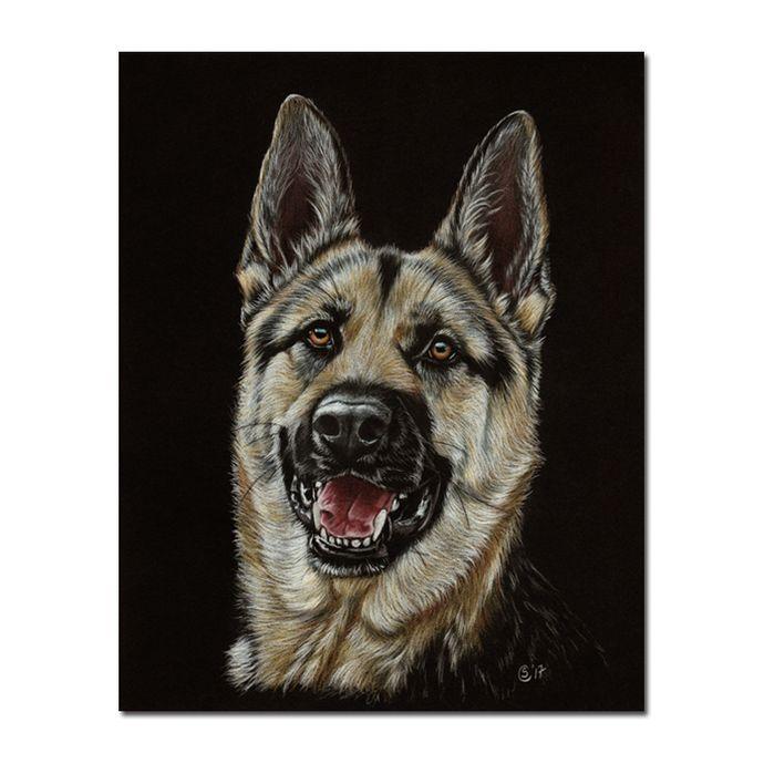 "GERMAN SHEPHERD 2 puppy dog Berger Allemand pencils painting Sandrine Curtiss ORIGINAL Art 8x10"" by Sandrinesgallery,"