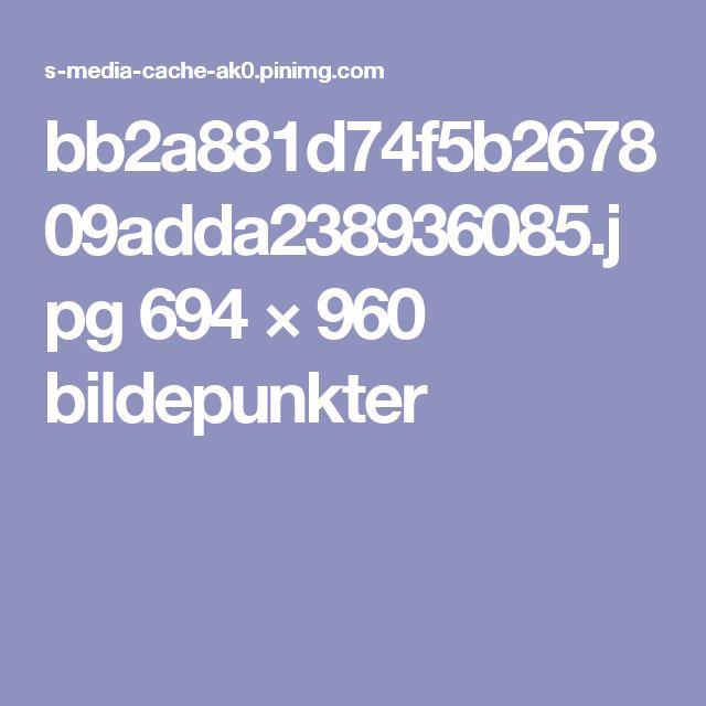 bb2a881d74f5b267809adda238936085.jpg 694 × 960 bildepunkter