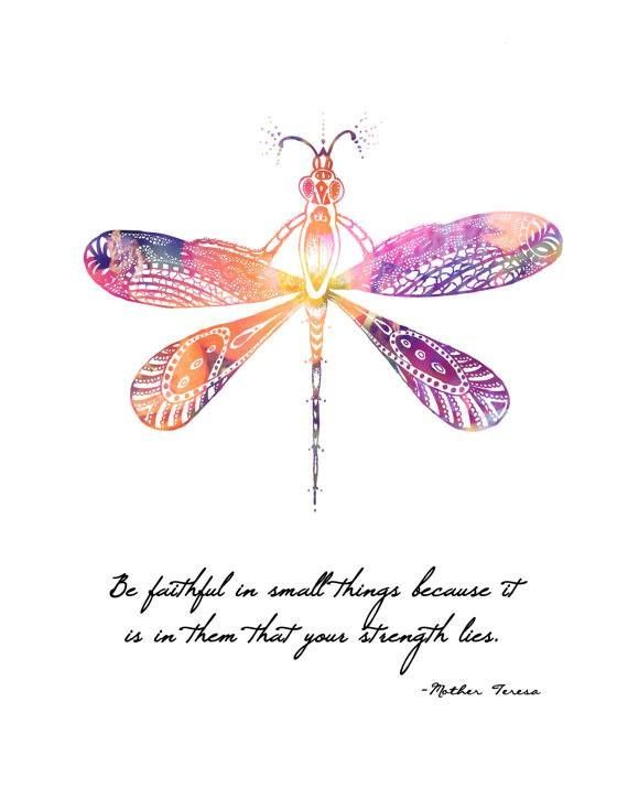 39 Best Dragonfly Quotes Images On Pinterest Dragon Flies