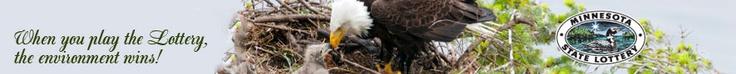 Minnesota Bound - Live Eagle Cam...Mom laid one egg so far...