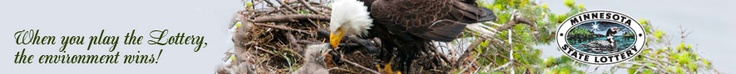 Minnesota Bound - Live Eagle Cam...Mom laid one egg so far...