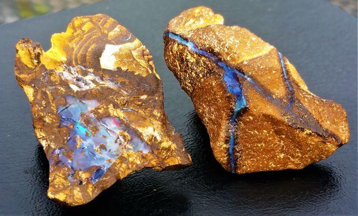 """Veel natuurlijke Black Opal in boulder - 40 x 23 x 15 mm / 34 x 25 x 12 mm - 110 ct (2)  Black Boulder Opal is een unieke variëteit van opaal die is zoals de naam suggereert gevonden in """"blokken"""". Boulder opal bestaat uit concreties en breuk vullingen van kostbare opaal geringschatting of gemeenschappelijke opaal in een donkere Kiezelhoudende IJzerzandsteen/zandsteen-matrix. Het is alleen gevonden in geïsoleerde gebieden in westelijk Queensland van Kynuna in het noorden Yowah en Koroit in…"""
