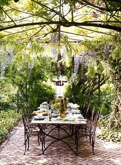Brick patio covered with wisteria
