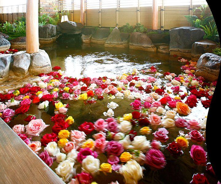Guest rooms/Spa/Cuisine/Facilities | Hyogo Prefect…