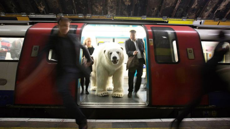 A Lifelike Eight-Foot Polar Bear Puppet Set Loose on the Streets of London to Promote a New Sky TV Show