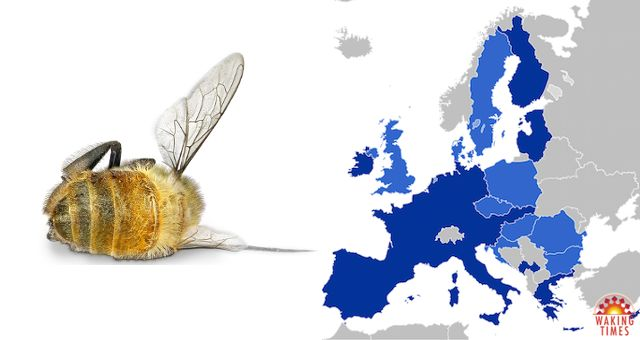 Europe is on the Brink of Completely Banning Bee-Killing Insecticides https://blogjob.com/environmentalblogs/2017/04/02/europe-is-on-the-brink-of-completely-banning-bee-killing-insecticides/