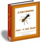 160 pg Ants, a Comprehensive Unit Study & Teaching Guide/Activity Book - St Aiden's Homeschool | Animals & Insects | CurrClick