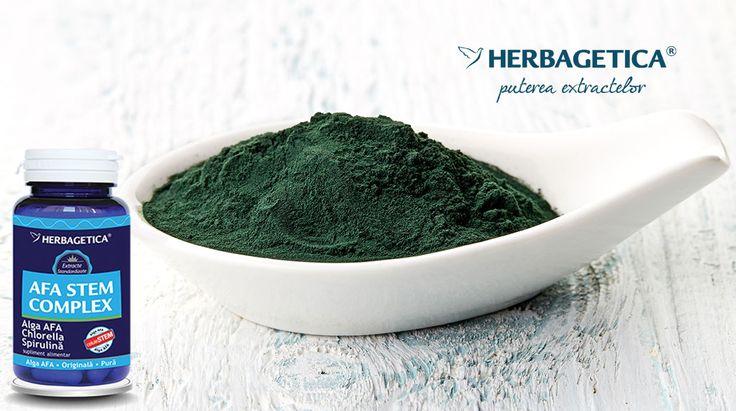 Algele verzi albastre sunt recunoscute drept alimentele cu cel mai bogat conținut de nutrienți din lume. Datorită conținutului foarte bogat în vitamine, minerale, clorofilă și antioxidanți, acestea feresc organismul de boli și mențin pielea tânără.