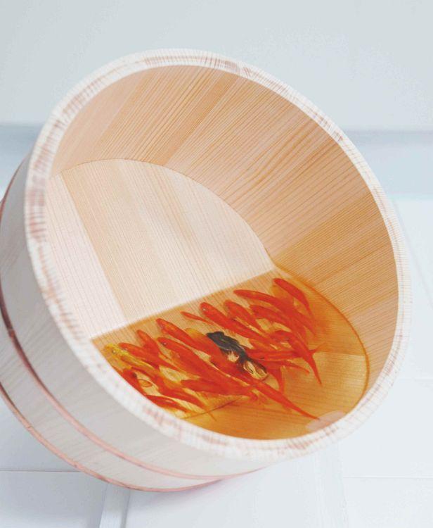 樹脂作品 - 金魚養画場 - 美術作家 深堀隆介 オフィシャルサイト