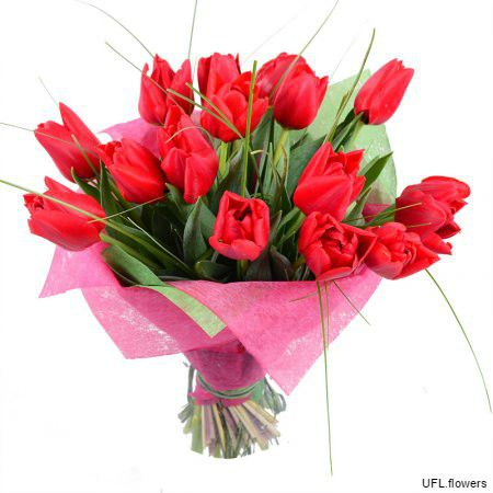 Bouquet «Red tulips»
