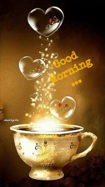 Good Morning....have a great day..