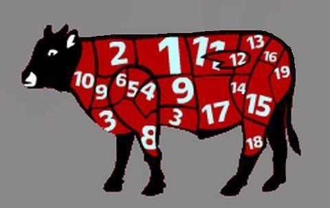 Номера и названия мясных частей говядины в Израиле и Европе - МЯСНОЙ КЛУБ: мясо, колбаса, копчёности, деликатесы. Оборудование, технологии производства и хранения.
