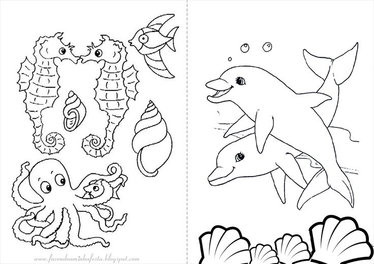 fundo do mar corais para colorir - Pesquisa Google