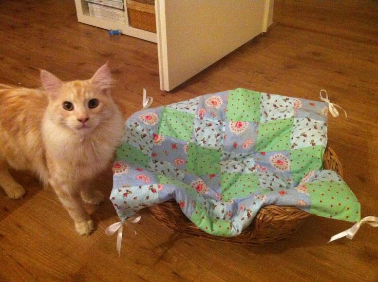 Honden/katten deken