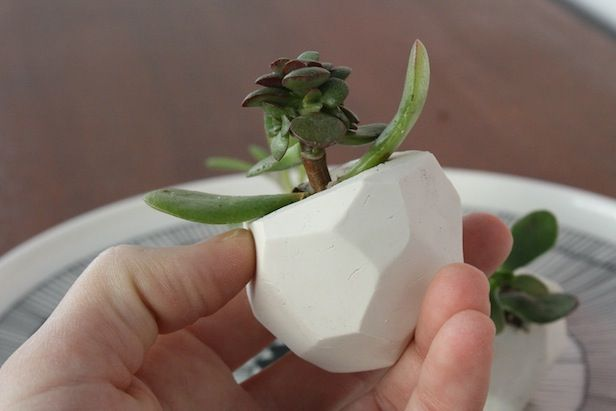 How to Make Mini Clay Planters >> http://blog.diynetwork.com/maderemade/2013/05/21/diy-wedding-favors/?soc=pinterest