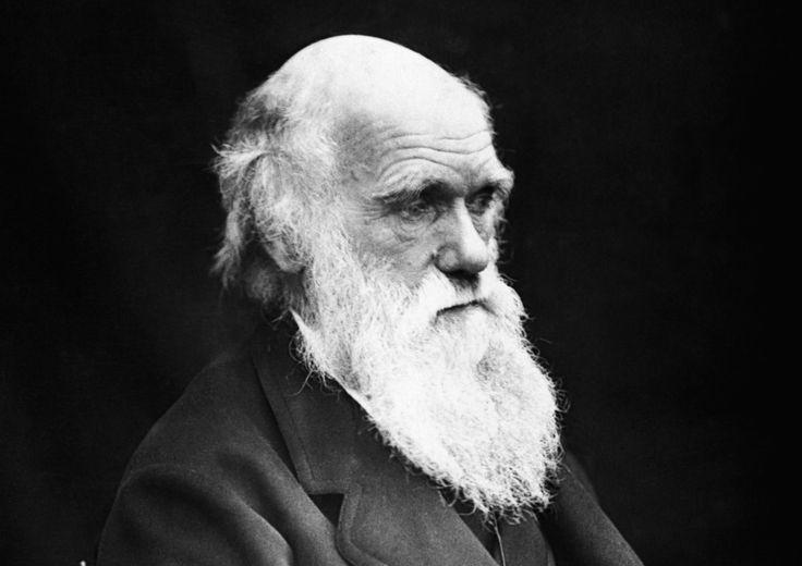 8 questions pour en finir avec les clichés sur la théorie de l'évolution Charles Darwin. © J. Cameron.