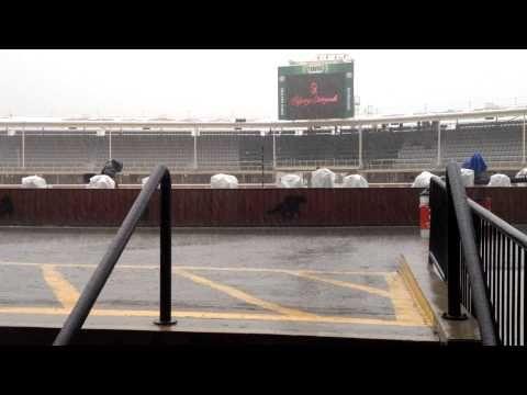 Monsoon Calgary Stampede Style
