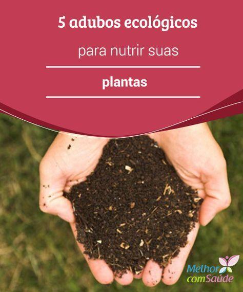 5 #adubos ecológicos para nutrir suas plantas Saiba quais #elementos podem ser usados como adubos #naturais para nutrir as #plantas e mantê-las livres de pragas em seu #jardim ou nos vasinhos da sua casa.