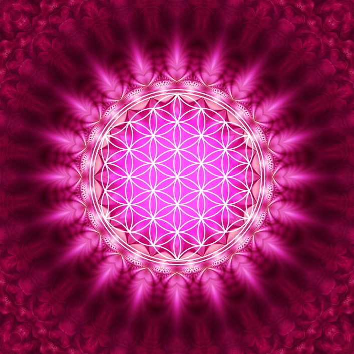 kvet zivota