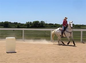 Don't Get Strung Out at Speed! Three Exercises for Hind End Engagement | BarrelRacingTips.com