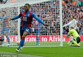 Image result for Palace FA cup final