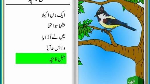 Bulbul Ka Bacha (Urdu Poem for Kids)