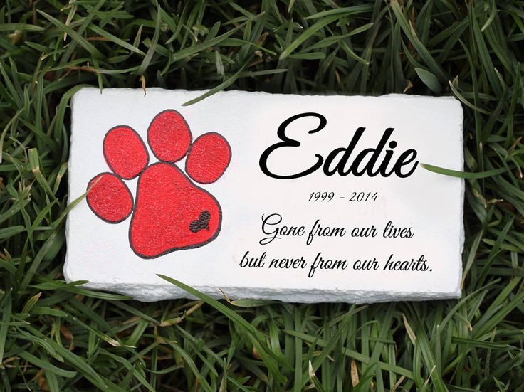 Personalized pet memorial stones, pet memorial stone, dog memorial stone, cat memorial stone, pet grave marker, pet headstone, pet tombstone by PetRocksbyTheresa on Etsy