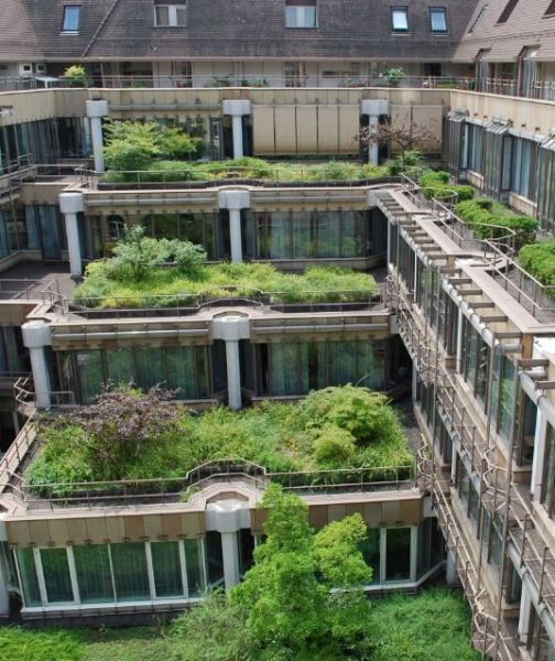 green roofs and walls Post & courier article on the growing popularity of green roofs and walls in south carolina offers benefits and examples of these sustainable technologies.