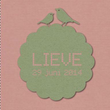 Een hip, vintage geboortekaartje met nostalgisch papier, vogels en een hartje.