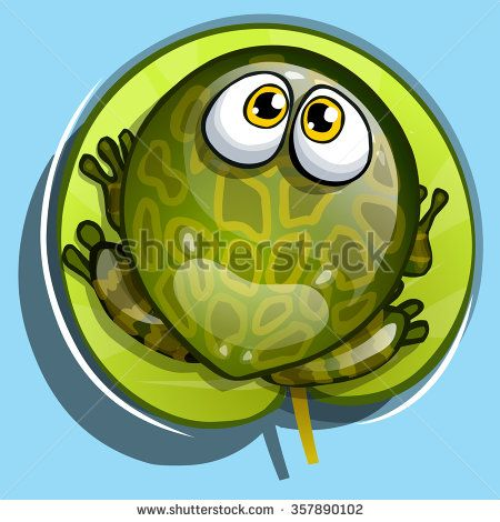 view from above. Green cartoon frog on a leaf  #assets #game #vector #UI #cartoon #casual #awesome