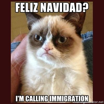 Tard the Grumpy Cat - Feliz navidad? i'm calling immigration