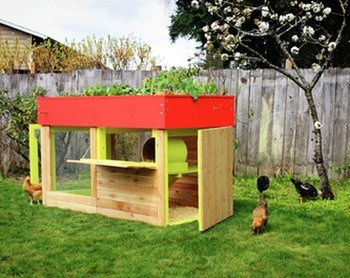 Green Living: One Mom Tells All about Her Family's Urban Farming Adventures: Backyard Chicken, Idea, Kippen House, Chicken Coops, Green Roof, Gardens, Chicken House, Urban Chickens