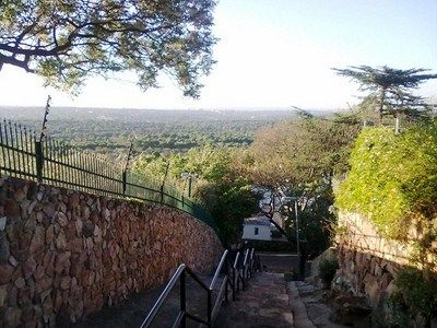 Walk the Westcliff Steps - Reviews - Johannesburg Live
