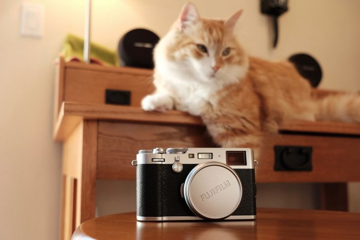 Fujifilm X100F Neko Cat