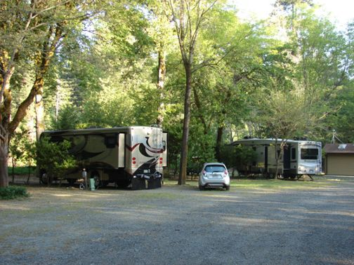 Giant Redwoods RV Park At Myers Flat California United States