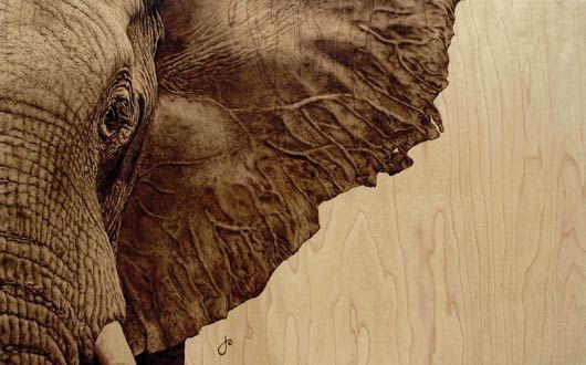 14 Best Images About Elephant Pyrography On Pinterest