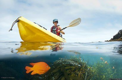 5 Things To Do at Channel Islands National Park