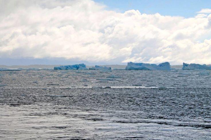 Laguna San Rafael, Aysén, Chile #sur #hielo #ice #campos de hielo #bellezanatural #amazing